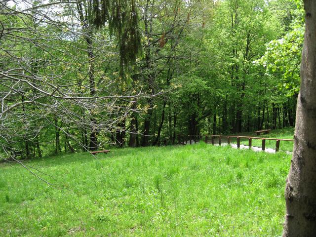 Prirodne ljepote - slike iz prirode koje ste vi uslikali i koje se Vama sviđaju s neta Livada